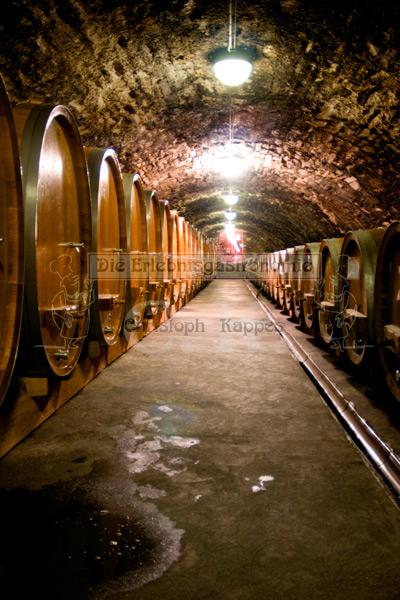 Weinkeller mit Weinfässern